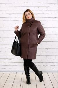 Фото Пальто из плащевки коричневого цвета | t0724-2