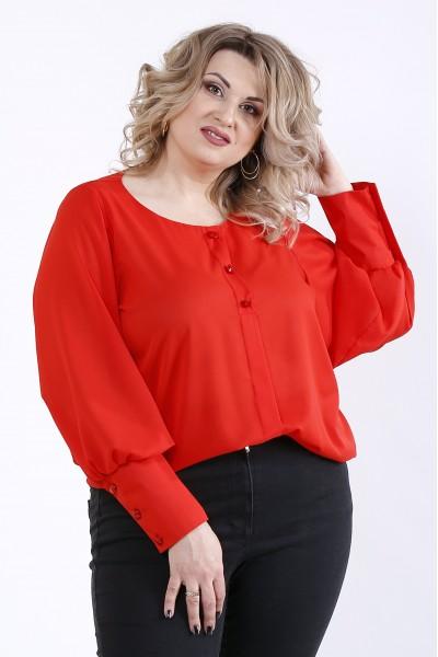 Фото Червона блузка | 01350-3